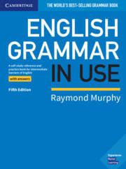 English Grammar in Use (5th Ed.), Book without answers