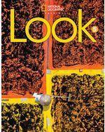 Look Level 5 AmE Workbook with Online Practice