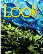 Look Level 3 B Combo Book Split (AmE)