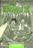 Big Bugs 2, Activity Book